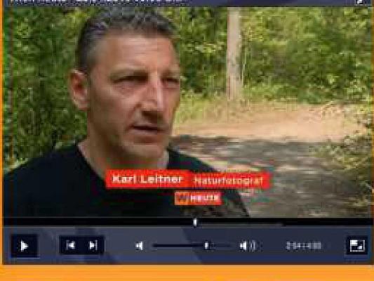 Orf Interview zum Thema Sternwartepark