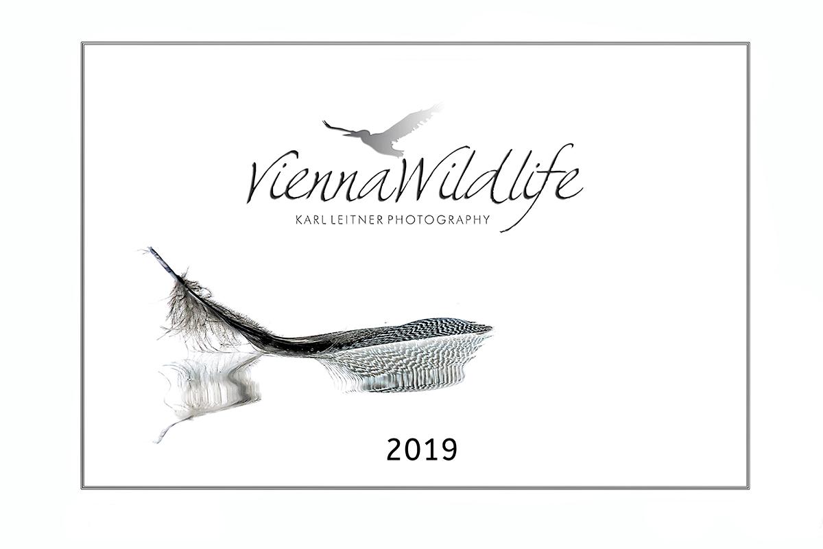 Vienna Wildlife Kalender 2019