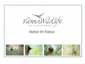 Vienna Wildlife Kalender